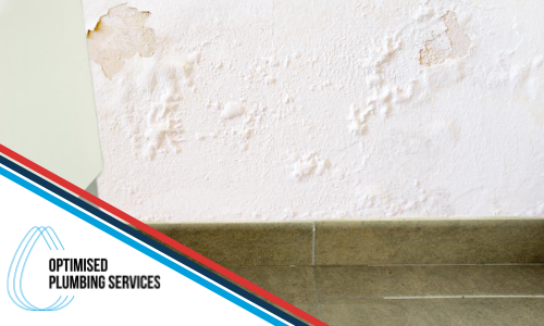 water-leaking-through-walls---how-to-fix-optimised-plumbing-services