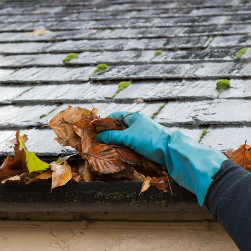 blocked-gutters-optimised-plumbing-services